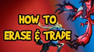 Pokemon X And Y Tutorial How To Start New Game Erase