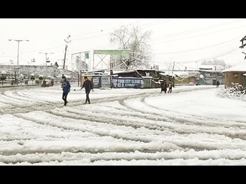 Fresh snowfall in Srinagar
