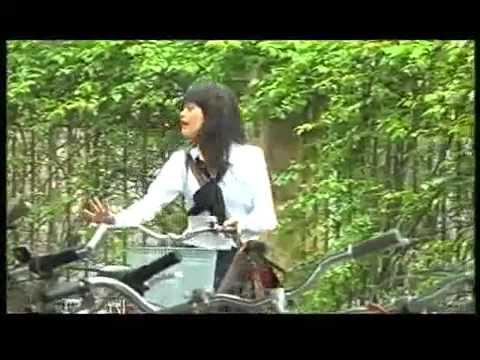 Bo Tu 10A8   Tap 16 Ke Hoach Hoang Hao