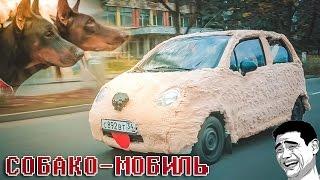 Что будет если превратить автомобиль в СОБАКУ! =))  #Авточелендж Жорик Ревазов.