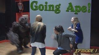 Crazy Gorilla Scare Prank!