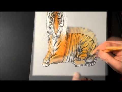 Cách vẽ 3d hình con hổ cực đẹp