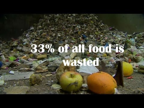 In 60 seconds: Wasted food in numbers