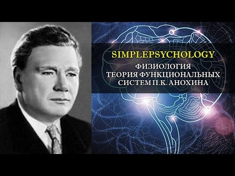 Физиология. Теория функциональных систем П.К. Анохина.