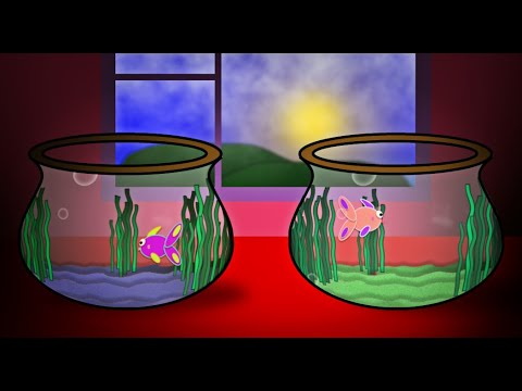 carnival of the animals vii aquarium by camille sa 235 ns animation by victor craven