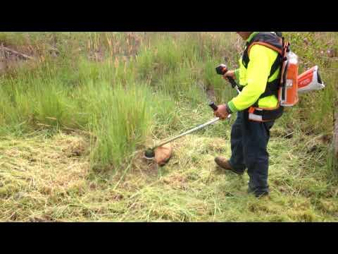 Video: Instruktionsvideo
