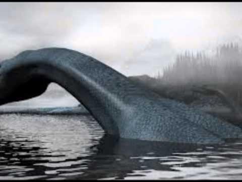 Los monstruos marinos sí pueden existir, según expertos