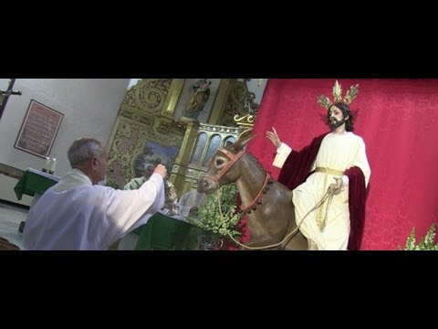 Presentación y Bendición del Señor de La Borriquita