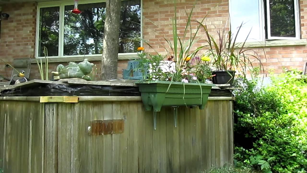 Hot tub water garden youtube for Garden pond tub