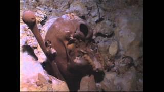 Naia: El Hallazgo Arqueológico Más Importante En Los