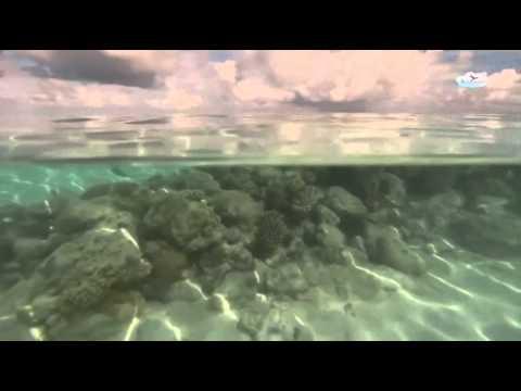 Maldives Tour Package Avventuro Travel India
