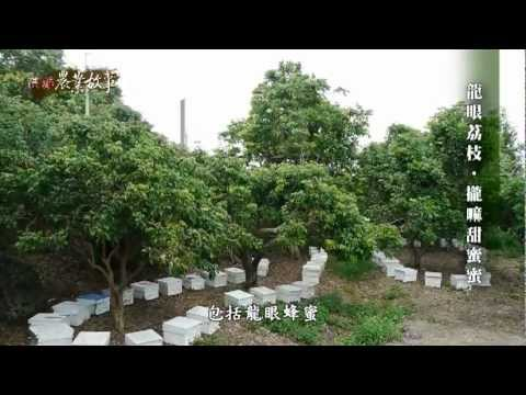 高雄農業故事館-蜂蜜(影片長度:15分25秒)