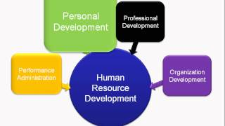 What Is Human Resource Development?