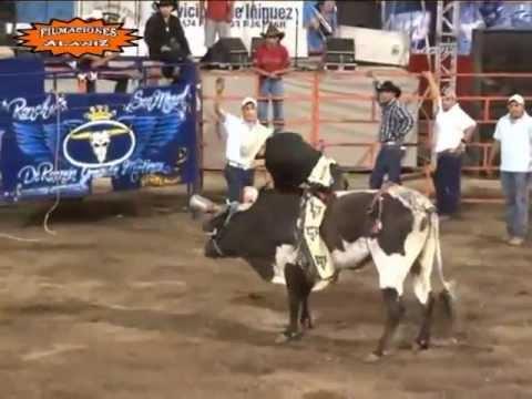Jaripeo Rancho San Miguel V.s La Jefe De Jefes 2011 (Casimiro Castillo)