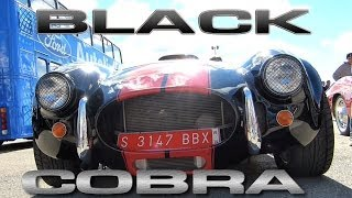[Black Cobra [HD]] Video