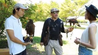 Pet Society - Falcon Ep.2-3