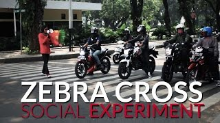 Aksi Nekat Usir Pelanggar Zebra Cross