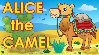 Alice The Camel Nursery Rhyme Children's Song By The