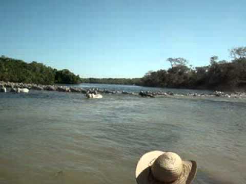 Travessia da Boiada no Rio Cristalino - MT