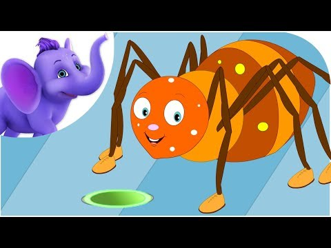 Incy Wincy Spider - Nursery Rhyme with Lyrics
