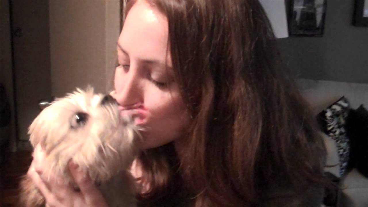 dog french kisses cute girl to death youtube. Black Bedroom Furniture Sets. Home Design Ideas