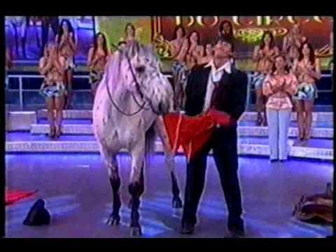 Cavalo Bêbado Circo Zanchettini O Melhor do Circo no Faustão