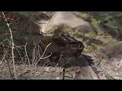 4x4 Off Road 2: Hummer - Trailer