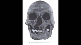 Lovelock Skull Found. M.K.Davis Discusses This Sensational