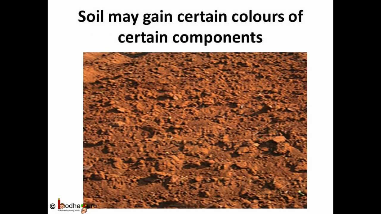 for Soil in english