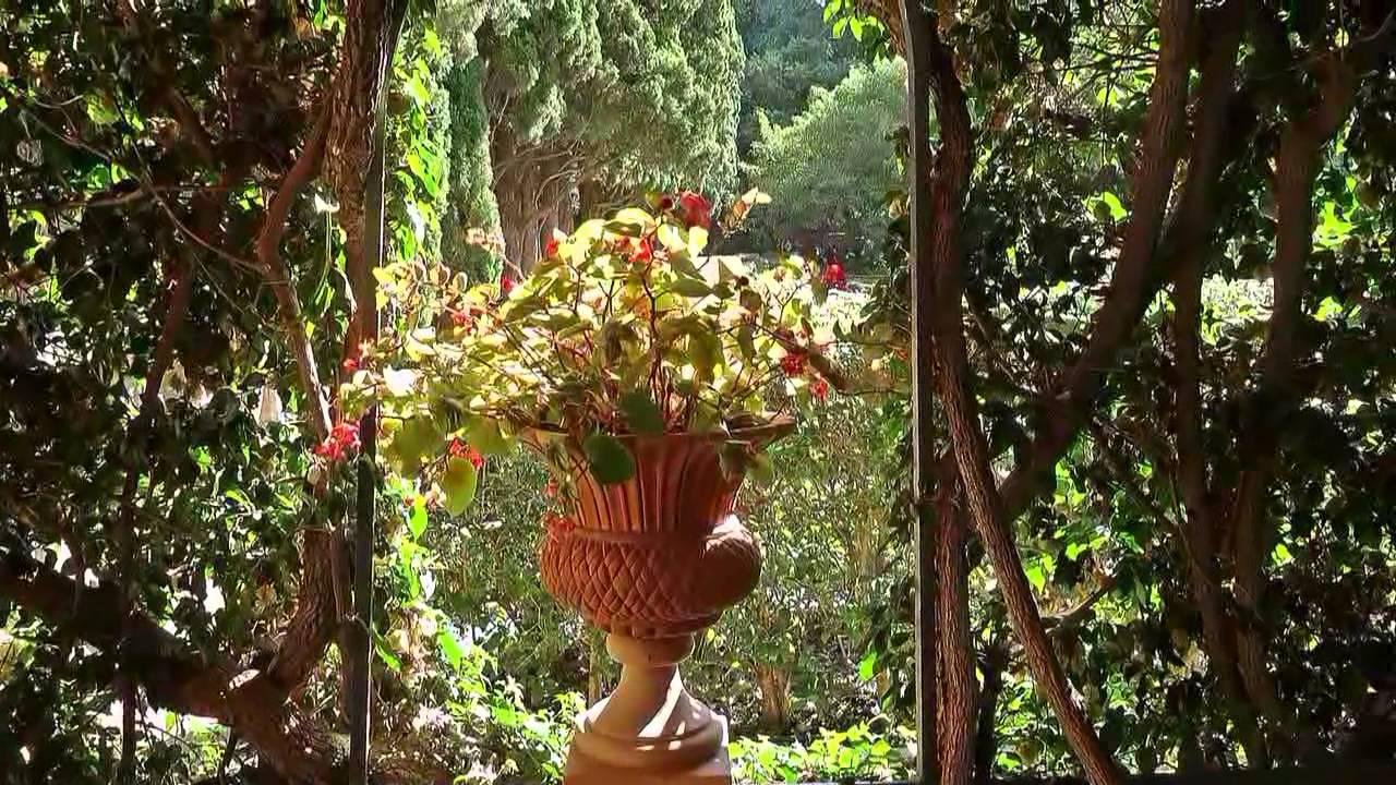 Paseo por los jardines de monforte valencia youtube for Los jardines de la luna