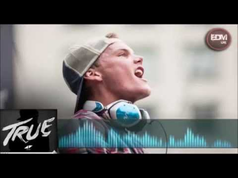 Avicii - Hey Brother ( Legendado Português BR ) 2013