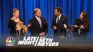Seth's Dog Frisbee vs. the Champion Italian Greyhound - Late Night with Seth Meyers