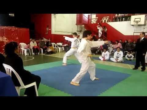 Taekwondo Itf Tuls Paso del Rey 2017