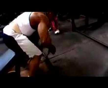 BodyBuilding Pros Silvio Samuel & Hidetada Yamagishi