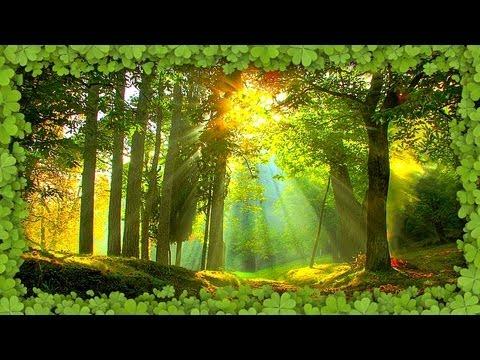 nature music