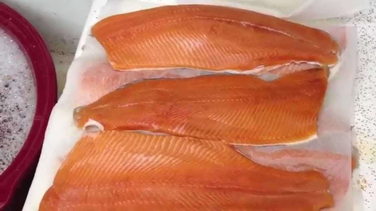 How to freeze salmon and other fish youtube for How to freeze fish