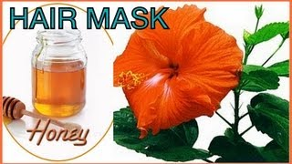 Hair Mask: How To Stop Hair Fall Dandruff Hair Mask To