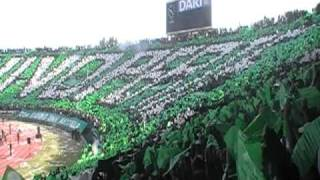 Tifo derby 109 : RAJA vs WAC