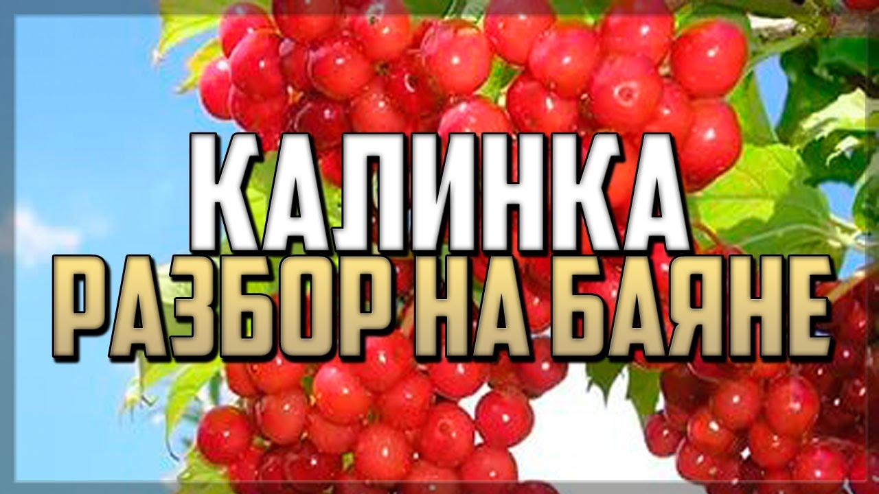 smotret-domashnie-foto-golih-devchonok