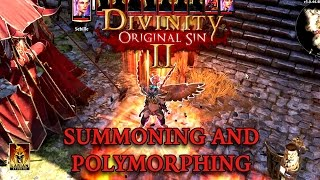 Divinity: Original Sin II - 'Summoning and Polymorphing' Trailer