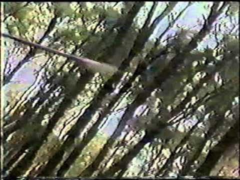 Tiểu Lý Phi Đao 1986 [Đài Loan]