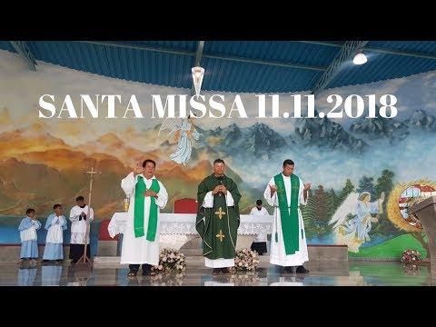 Santa Missa | 11.11.2018 | Padre Paulo Sérgio Mendes | ANSPAZ