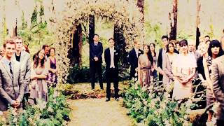 Edward & Bella's Wedding The Twilight Saga