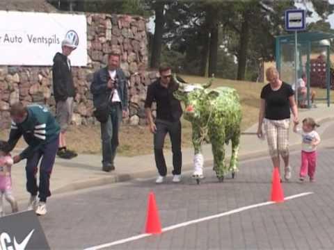 Смотреть видео Коровка из  «Парада коров» 2012 года