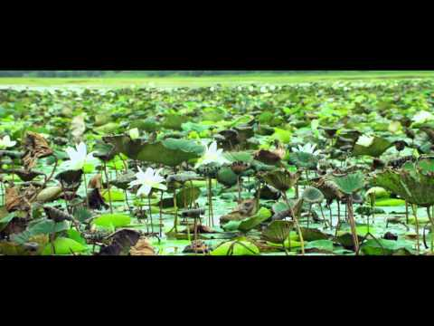 Adhee-Lekka-Movie-Yelelo-Song