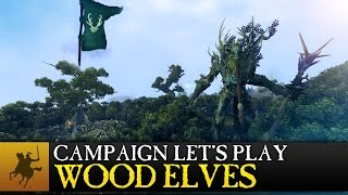 Total War: WARHAMMER - Realm of the Wood Elves Kampány Játékmenet