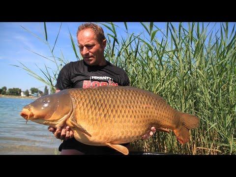 SLOVAKIA CARP RECORD 30.00kg