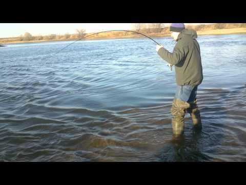 Собрались никита и олег на рыбную ловлю