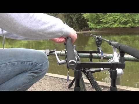 Urban carp fishing 2