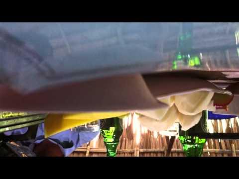 DON CA TAI TU MIEN TAY  ( CAN THO )   CLIP 3 - Youtube
